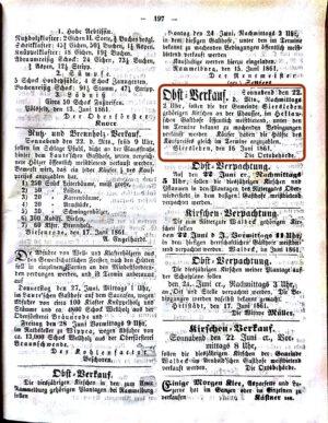 1861-06-19-197-heklau