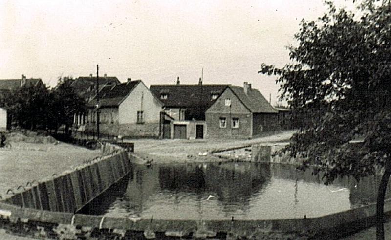 Siersleben-Teich-3